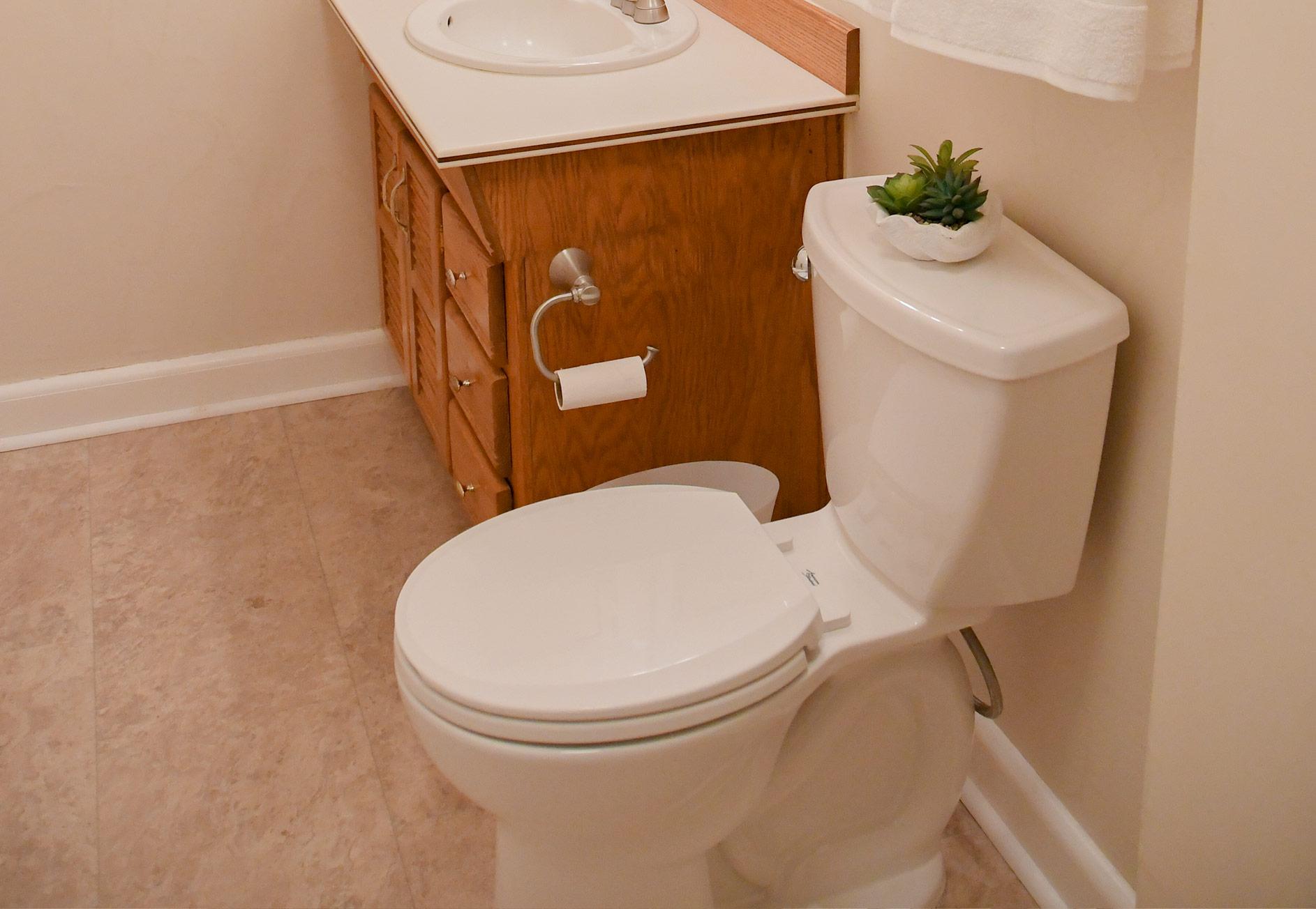 Lake City Rental - Bathroom
